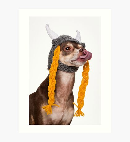 Viking the Dog Art Print