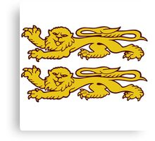 normandie lion normand cat Canvas Print