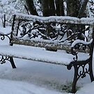 Snowy Garden Bench by beetlebugphoto