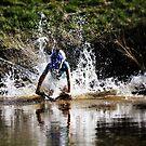 Water Plunge by Luke Donegan
