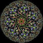 Noneuclidean Kaleidoscope by David Feldman