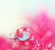 A Drop with Rasberrys and Cream by Sharon Johnstone