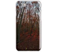 Beechwood sunset iPhone Case/Skin