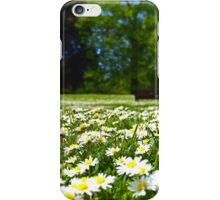 Daisies in the Park iPhone Case/Skin