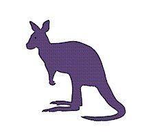 Kangaroo Wallaby Photographic Print