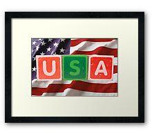 usa and flag in toy block letters Framed Print