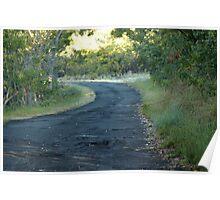 Mauna Loa Road Poster