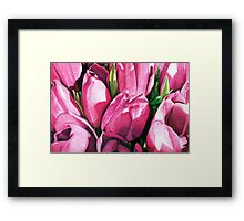 Pink Tulips in Coloured Pencil Framed Print