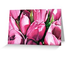 Pink Tulips in Coloured Pencil Greeting Card