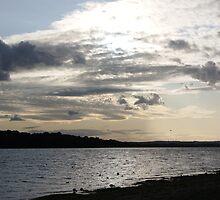 Early Evening Lakeside Landscape  by HannaKingdom