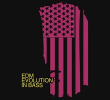 Evolution In Bass (Special Edition) by DropBass
