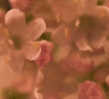 Valarian Blossoms Macro - Digital Oil Painting Sticker