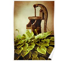 The Old Water Pump Poster