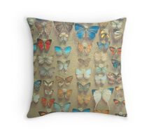 The Butterfly Collection II Throw Pillow