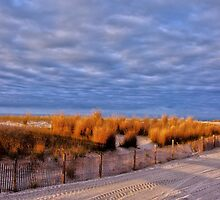 The Early Morning Light in Atlantic City by Debra Fedchin