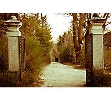 Gate Photographic Print