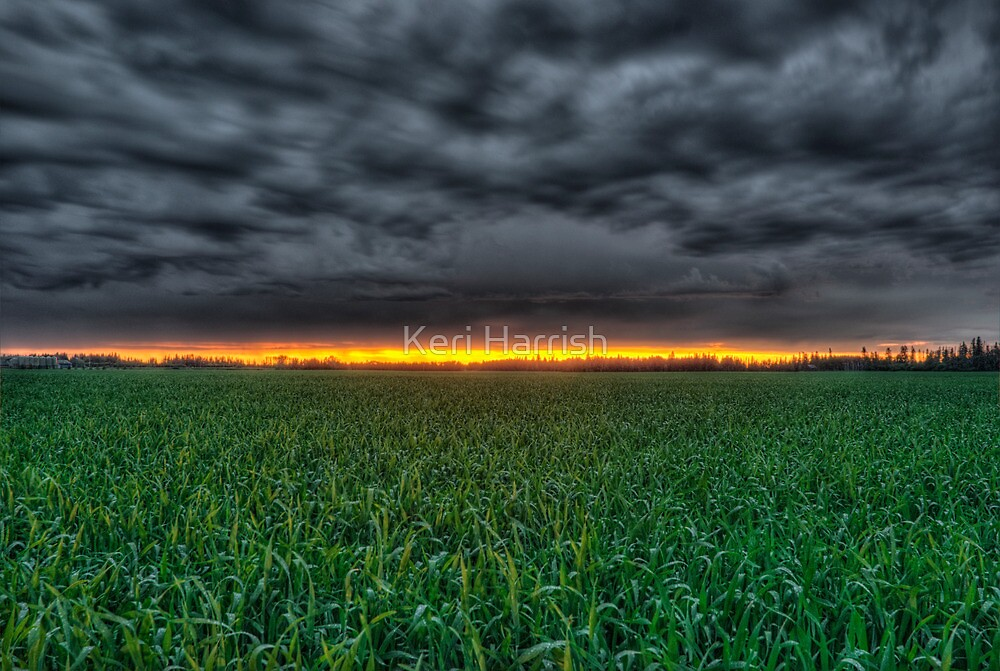 A Sliver Of A Sunset by Keri Harrish