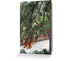 Lots of red prayer ribbons and prayer tags - up in a tree Greeting Card