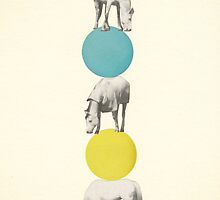Horseplay by Cassia