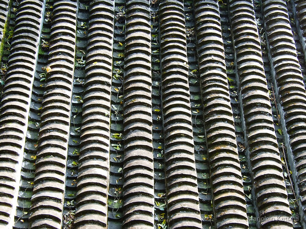 Lots of little roof tiles - Tanzhe Si by Marjolein Katsma