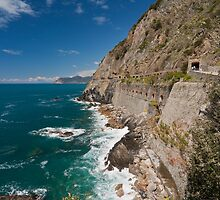 Along the Via del Amore by mikereid