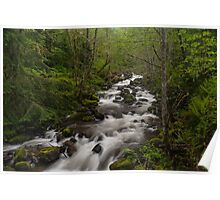 Carbon River Serenity Poster