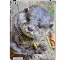 Beautiful Asian Otter iPad Case/Skin