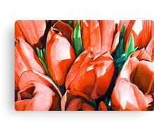 Red Tulips in Coloured Pencil Canvas Print