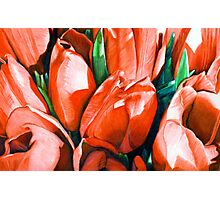 Red Tulips in Coloured Pencil Photographic Print