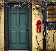 Vine Covered Doorway (No. 2) by jjtaylor