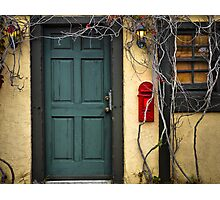 Vine Covered Doorway (No. 2) Photographic Print