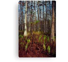 Dome's Edge. Split Oak. Canvas Print