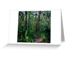 Path Through The Oaks. Highlands Hammock. Greeting Card