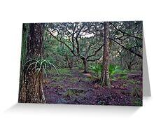 Bromeliad Portrait. Three Lakes W.M.A. Greeting Card