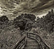 Mead Gardens Boardwalk HDR by MKWhite