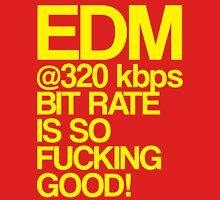 EDM at 320 kbps (yellow) Womens Fitted T-Shirt