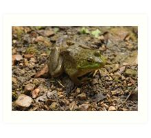 Frog January Art Print