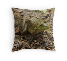 Frog January Throw Pillow