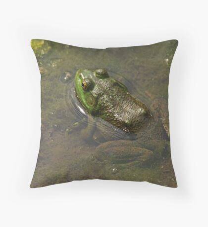 Frog April Throw Pillow