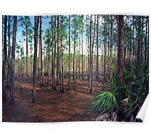 Pine Forest #3. Split Oak. Poster