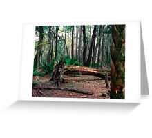 Fallen Oak.  Greeting Card