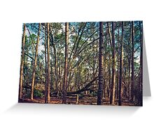 The Split Oak. Greeting Card
