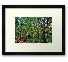 cartoon forest Framed Print
