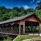 Mohican state park by Ron Neiger