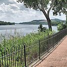 Ohio River Walkway by Monnie Ryan