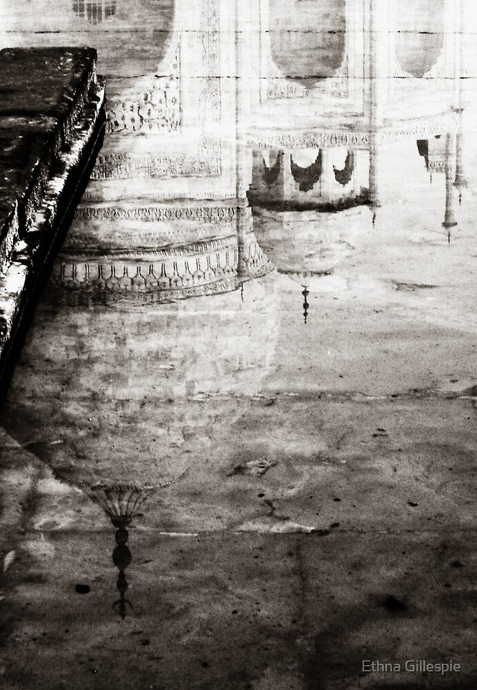 Taj Reflection  by Ethna Gillespie