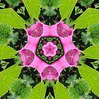 Foxglove & Fern Kaleidoscope by Alice Schuerman
