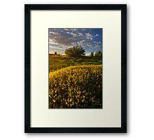 Summer Flow Framed Print