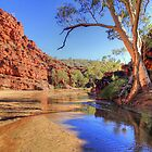 Ormiston Gorge by James mcinnes