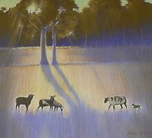 Shadows & Light - Lansdowne by louisegreen